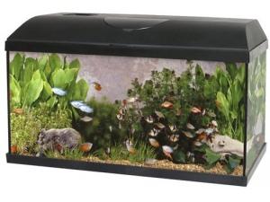 Akvárium PACIFIC 50x25x30 cm