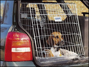 Klec Dog Residence mobil 76x53x61cm