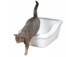 Toaleta Cleany Cat
