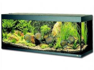 Akvárium Rio 300 černé
