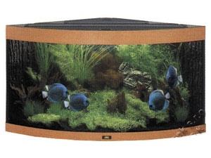 Akvarium Trigon 350 buk