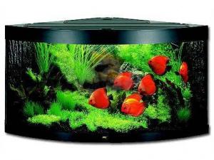 Akvarium Trigon 350 černá