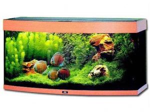 Akvarium Vision 260 buk