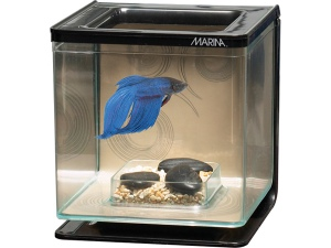 Marina Betta Kit Zen 2l